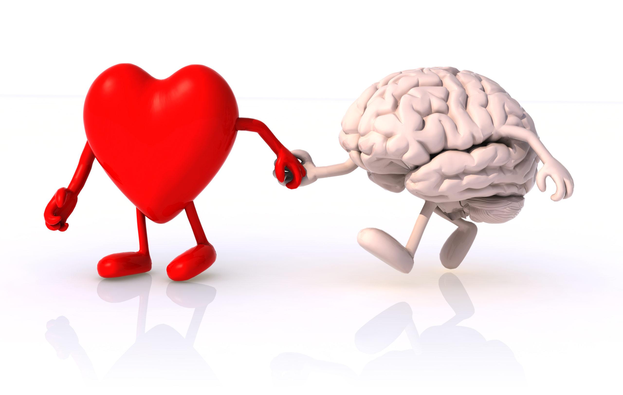 Le stéthoscope permet de connecter votre cœur et votre cerveau