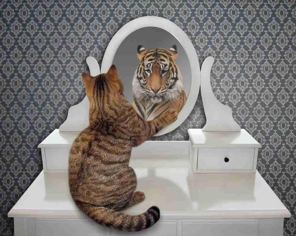 l'autel est un miroir qui vous permet de voir ce qu'il y a à l'intérieur de vous