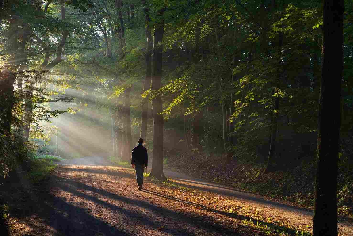 un homme se ressource dans la nature : il traverse une période difficile