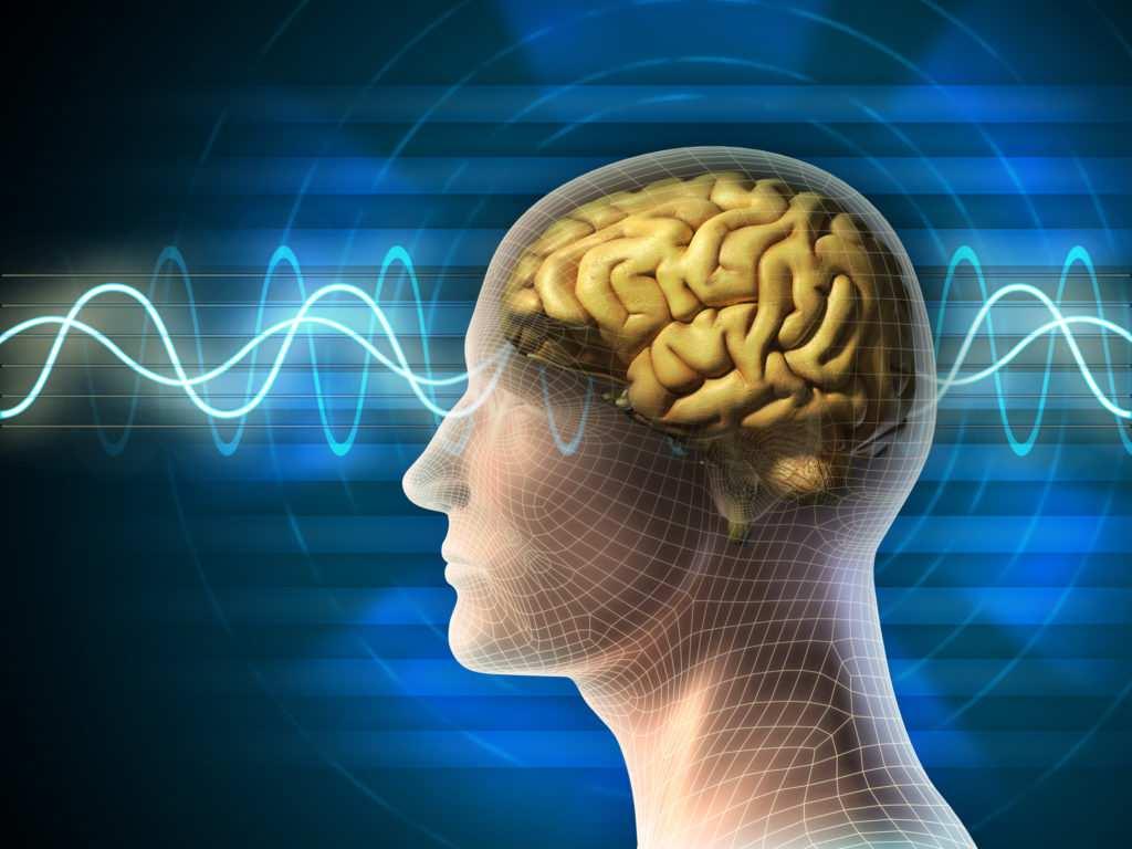 La fréquence du cerveau qui permet le voyage chamanique