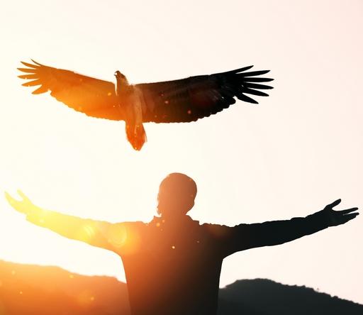 Les gardiens du feu : aigle symbole chamanique