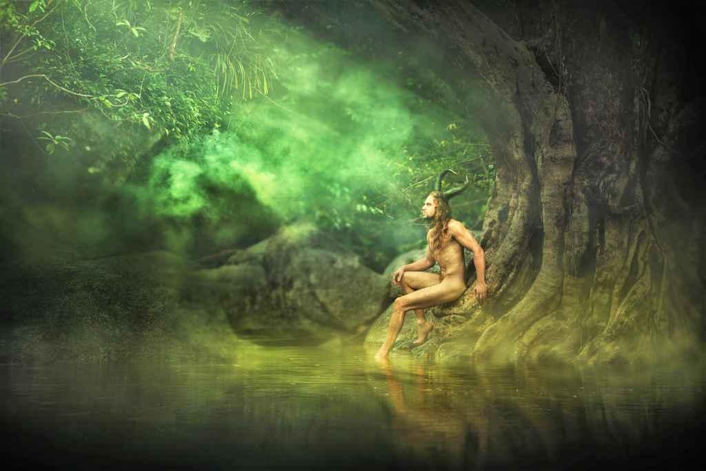 Esprit de la nature des arbres et forêts