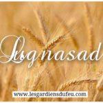 Fête druidique de Lugnasad